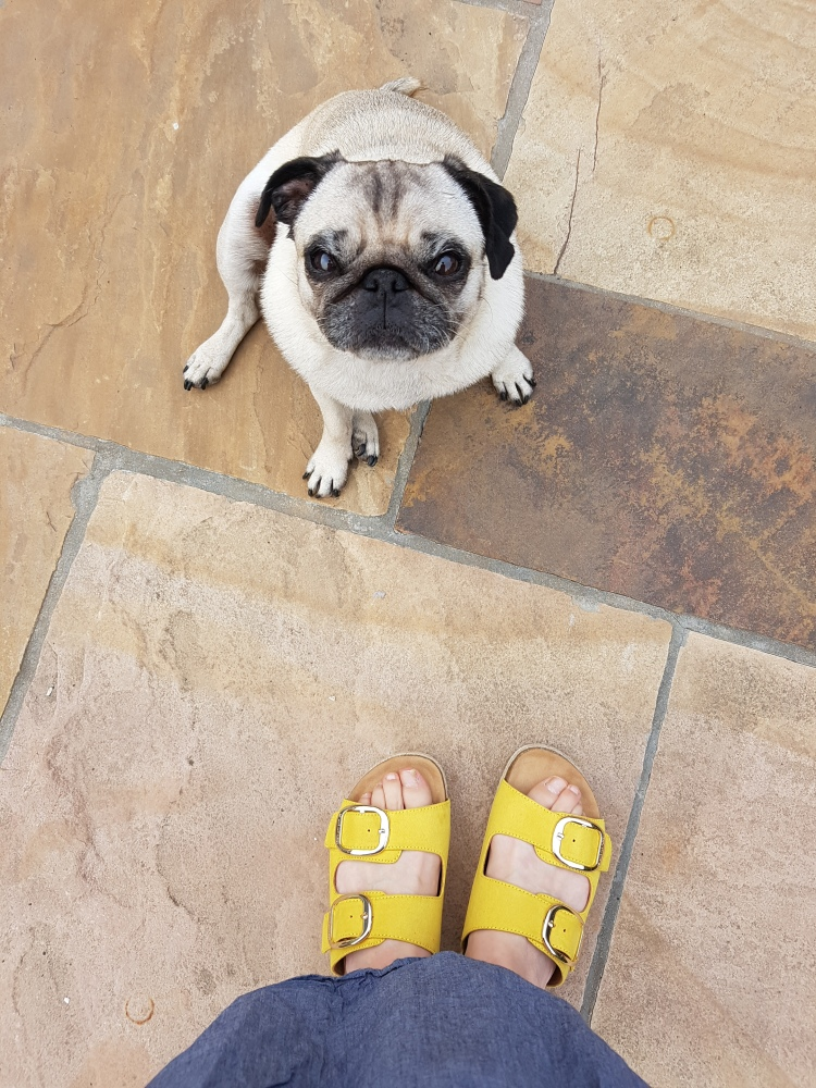 Vegan yellow sandals pug Scapino